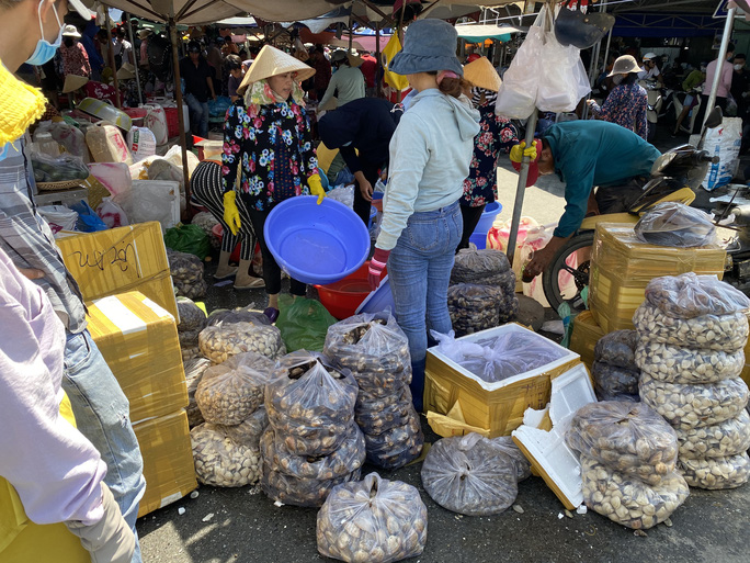 Du khách đổ về Bà Rịa - Vũng Tàu ăn hải sản, giá cả tăng vọt - Ảnh 2.