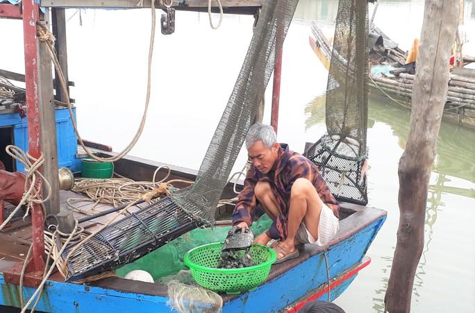 Chi 43 tỉ đồng nâng cấp chưa lâu, cảng cá ở Thanh Hóa đã trùm mền - Ảnh 10.