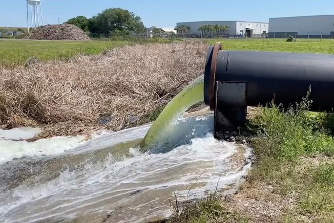 Bang Florida đối mặt nguy cơ bức tường nước thải cao 6 m - Ảnh 2.