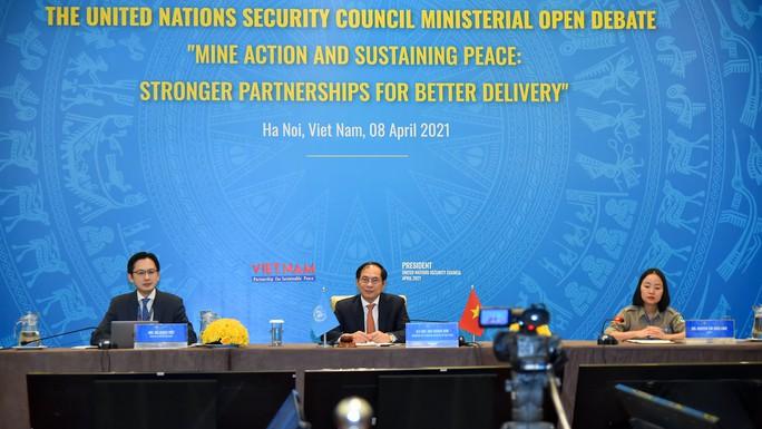 Diễn viên Dương Tử Quỳnh dự cuộc họp Liên Hiệp Quốc do Việt Nam chủ trì - Ảnh 7.