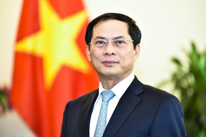 Tân Bộ trưởng Ngoại giao Bùi Thanh Sơn - nhà ngoại giao kỳ cựu - Ảnh 1.