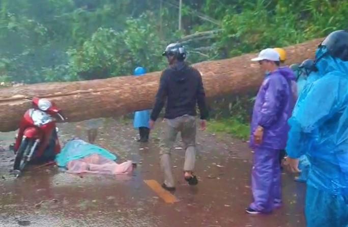 Mưa lớn kèm giông lốc cây rừng ngã đè 2 người thương vong thương tâm - Ảnh 2.