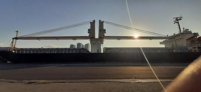 Hình ảnh đầu tiên của 2 đoàn tàu metro số 1 về cảng TP HCM - Ảnh 2.