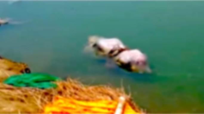 Thi thể nghi của bệnh nhân Covid-19 liên tiếp dạt vào bờ sông Hằng - Ảnh 1.