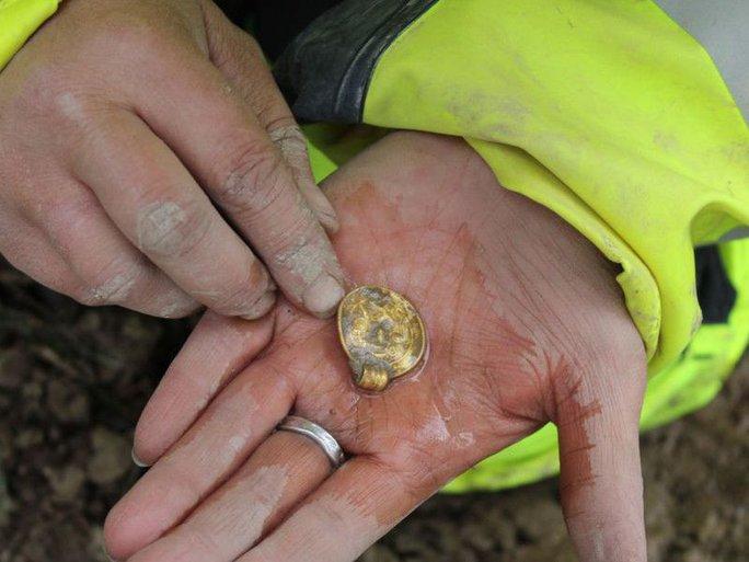 Phát hiện 7 báu vật tế thần bằng vàng nhờ người dò kim loại - Ảnh 2.