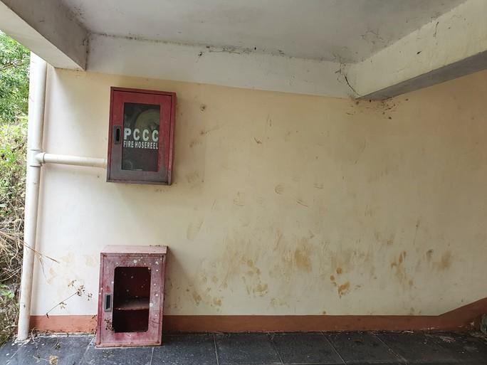 trường cấp 3 khang trang bị bỏ hoang ở tỉnh nghèo - ảnh 3.