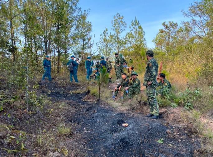 Quảng Nam: Nắng nóng, rừng thông bốc cháy dữ dội - Ảnh 4.