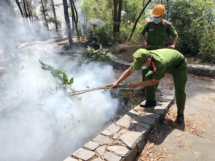 Quảng Nam: Nắng nóng, rừng thông bốc cháy dữ dội - Ảnh 1.