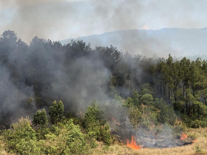 Quảng Nam: Nắng nóng, rừng thông bốc cháy dữ dội - Ảnh 5.