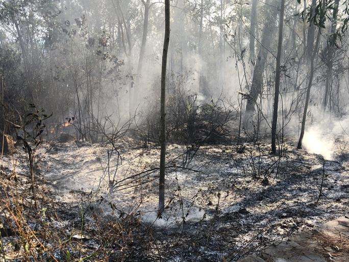 Quảng Nam: Nắng nóng, rừng thông bốc cháy dữ dội - Ảnh 6.