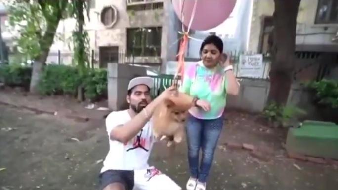 YouTuber nổi tiếng bị bắt sau khi buộc chó cưng vào bóng bay - Ảnh 1.