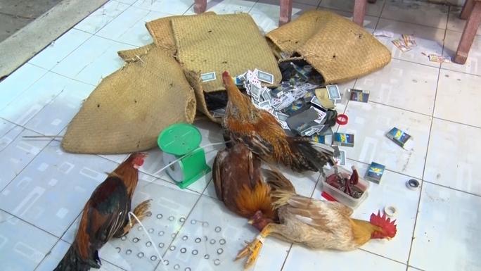 CLIP: Công an ập vào trường gà của Huỳnh Tài Liệt, bắt giữ 24 đối tượng - Ảnh 2.