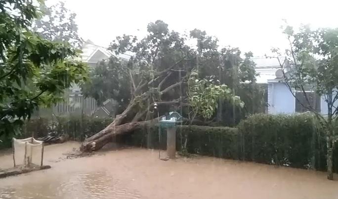 Hàng chục nhà dân tốc mái sau 30 phút mưa đá, lốc xoáy quét qua - Ảnh 3.