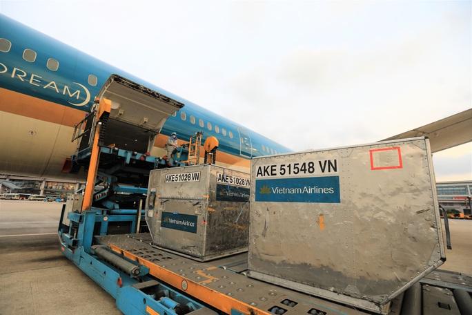Việt Nam tặng Lào 500.000 USD và vật tư, thiết bị y tế ứng phó Covid-19 - Ảnh 6.