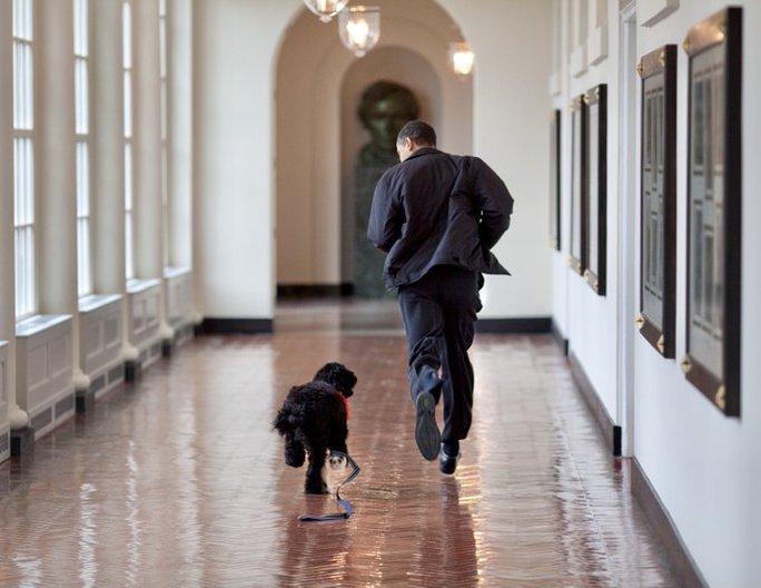 Ông Obama thông báo sự ra đi của ngôi sao Nhà Trắng - Ảnh 1.