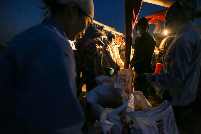 CLIP: Nắng đỉnh điểm, nông dân Hà Nội ra đồng gặt lúa vào ban đêm - Ảnh 9.