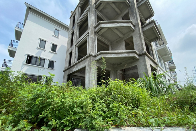 Biệt thự hàng chục tỉ đồng bỏ hoang nhiều năm ở Hà Nội - Ảnh 6.