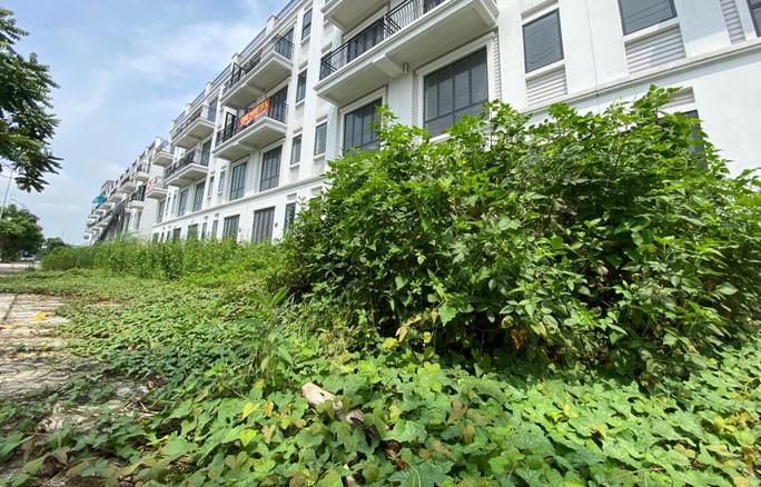 Biệt thự hàng chục tỉ đồng bỏ hoang nhiều năm ở Hà Nội - Ảnh 10.