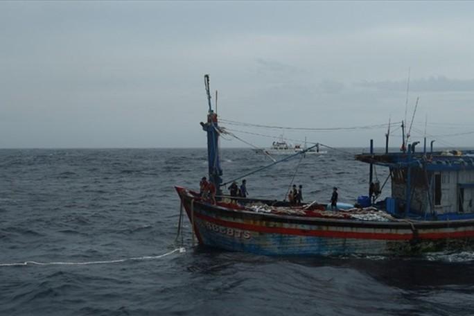 Lên nóc cabin tàu cá phơi mực, một ngư dân rơi xuống biển mất tích - Ảnh 1.