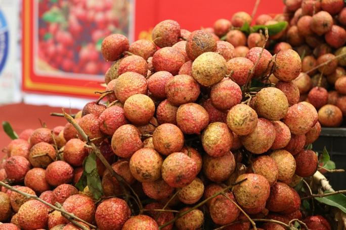 Cần Thơ phát động tiêu thụ vải thiều giúp nông dân Bắc Giang - Ảnh 3.