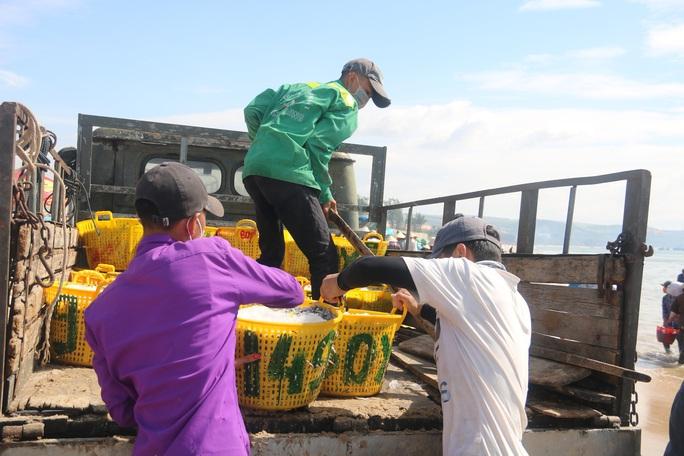 Ngư dân Bình Thuận trúng mùa cá cơm - Ảnh 5.