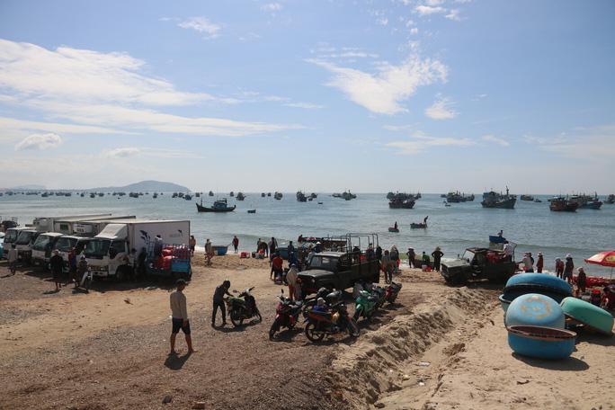 Ngư dân Bình Thuận trúng mùa cá cơm - Ảnh 4.