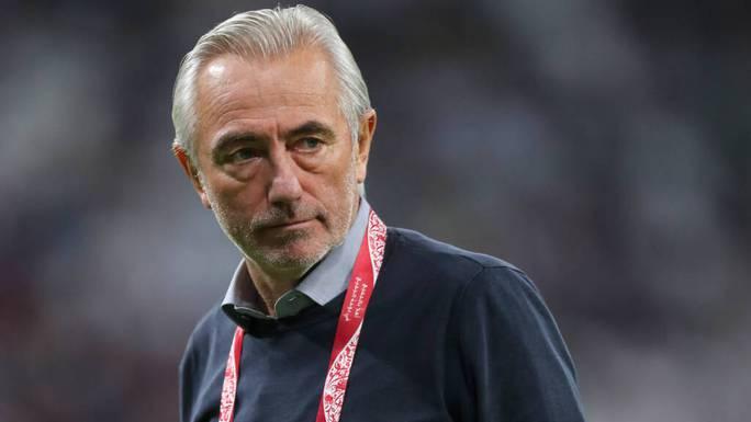 HLV Bert van Marwijk: Thắng Việt Nam là trận hay nhất của UAE - Ảnh 1.