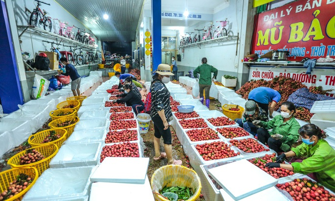 Trung Quốc nhập hơn 2,5 triệu tấn trái cây Việt Nam - Ảnh 1.
