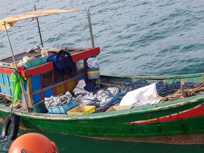 Thông tin bất ngờ vụ kho báu ngư dân tìm thấy dưới đáy biển Quảng Bình - Ảnh 2.