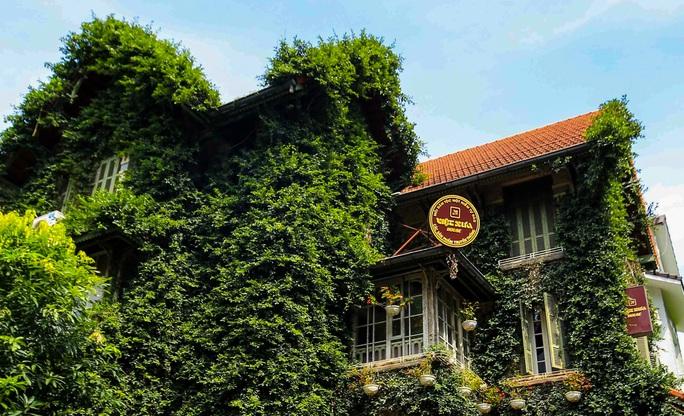 Cận cảnh ngôi biệt thự phủ toàn cây xanh giúp chủ nhà tránh nắng nóng - Ảnh 8.