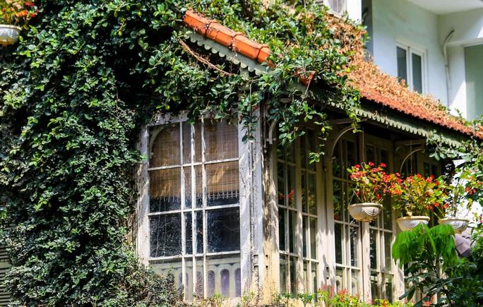 Cận cảnh ngôi biệt thự phủ toàn cây xanh giúp chủ nhà tránh nắng nóng - Ảnh 5.