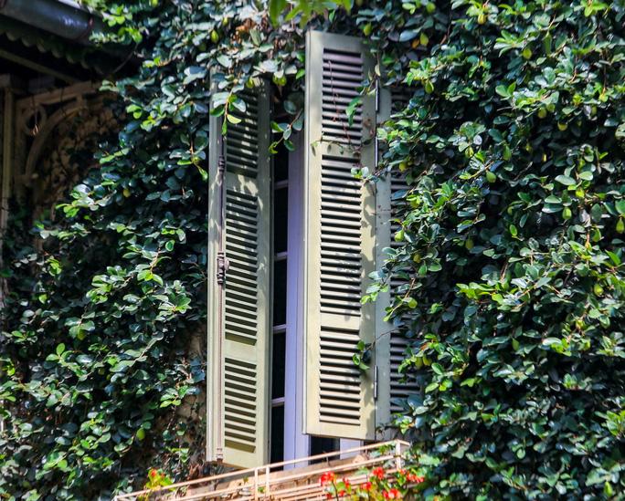 Cận cảnh ngôi biệt thự phủ toàn cây xanh giúp chủ nhà tránh nắng nóng - Ảnh 7.