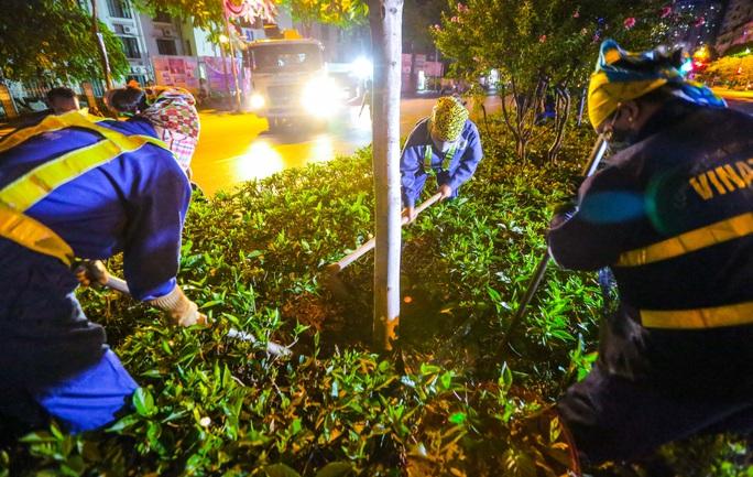 CLIP: Hà Nội di dời hàng cây phong lá đỏ trong đêm - Ảnh 9.