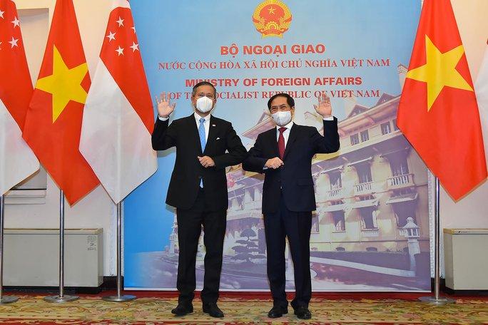 Việt Nam-Singapore thúc đẩy công nhận lẫn nhau về chứng chỉ vắc-xin - Ảnh 1.