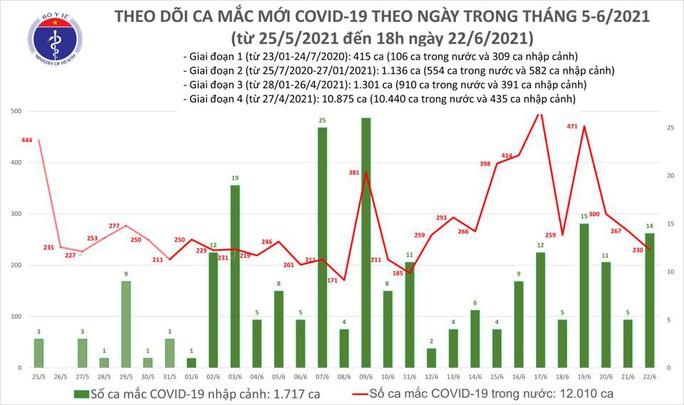Ngày 22-6, Việt Nam có 248 ca mắc Covid-19 và 93 trường hợp khỏi bệnh - Báo Người lao động