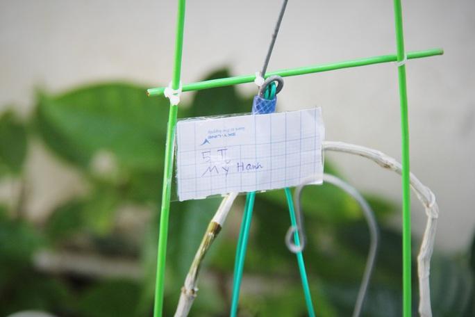 Đổi lan rừng lấy mì tôm, nước lọc ủng hộ tuyến đầu chống dịch - Ảnh 2.