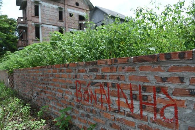 CLIP: Hàng loạt biệt thự bỏ hoang, khu đô thị ở Hà Nội thành nơi chăn thả bò - Ảnh 14.