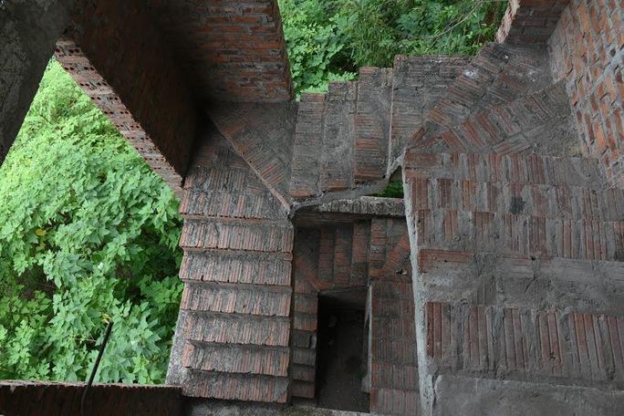 CLIP: Hàng loạt biệt thự bỏ hoang, khu đô thị ở Hà Nội thành nơi chăn thả bò - Ảnh 9.