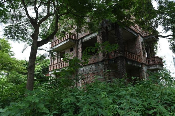 CLIP: Hàng loạt biệt thự bỏ hoang, khu đô thị ở Hà Nội thành nơi chăn thả bò - Ảnh 2.