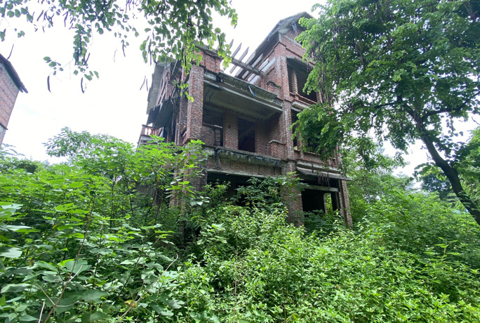 CLIP: Hàng loạt biệt thự bỏ hoang, khu đô thị ở Hà Nội thành nơi chăn thả bò - Ảnh 3.