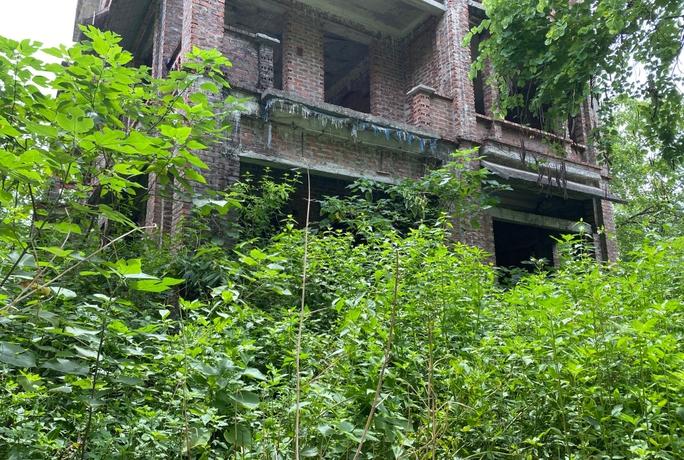 CLIP: Hàng loạt biệt thự bỏ hoang, khu đô thị ở Hà Nội thành nơi chăn thả bò - Ảnh 6.