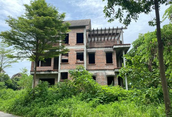 CLIP: Hàng loạt biệt thự bỏ hoang, khu đô thị ở Hà Nội thành nơi chăn thả bò - Ảnh 5.