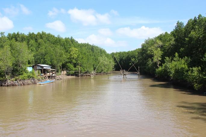 Trải nghiệm thú vị ở rừng ngập mặn lớn nhất Việt Nam - Ảnh 9.