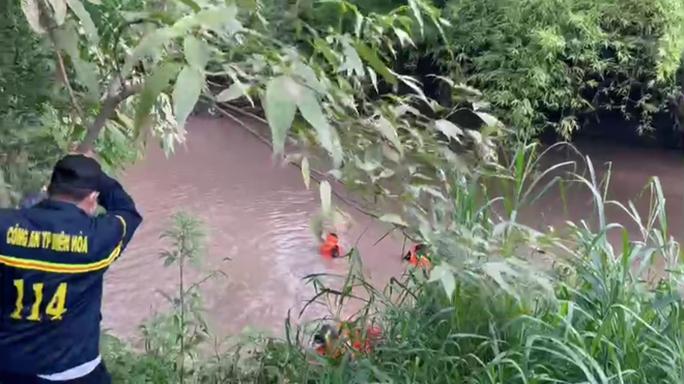Hai bé trai đuối nước thương tâm ở Biên Hoà - Ảnh 1.