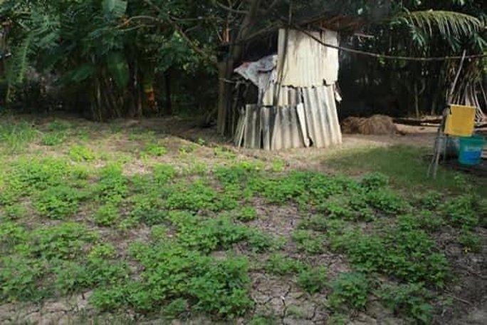 Giữa thị phi của Phi Nhung, dân mạng soi gia cảnh Hồ Văn Cường - Ảnh 4.