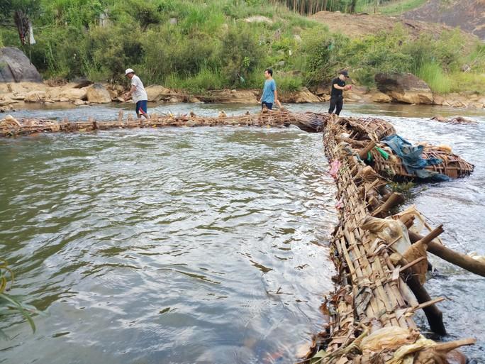 Dùng aruung bắt cá để bảo vệ môi trường - Ảnh 2.
