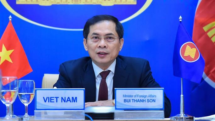 Hội nghị trực tuyến đặc biệt Bộ trưởng Ngoại giao ASEAN-Mỹ - Ảnh 1.