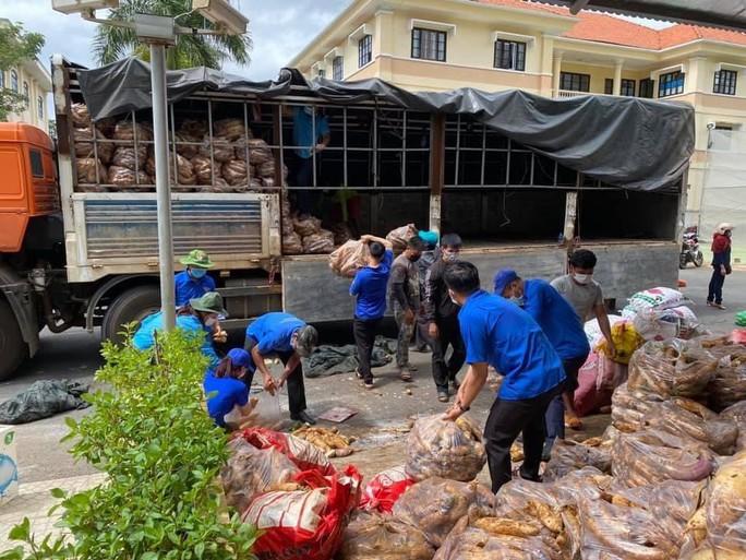 Nông sản từ Lâm Đồng đi xuyên đêm về tặng người dân TP HCM - Ảnh 8.