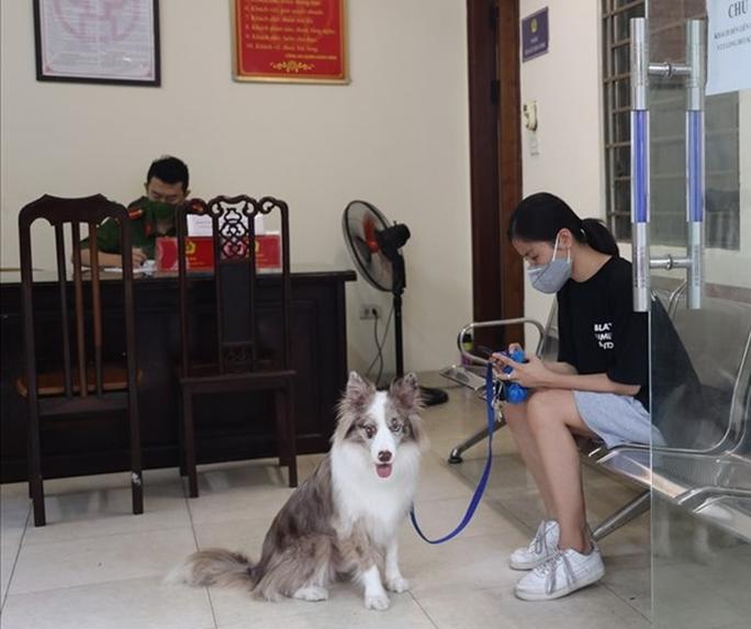 Dắt chó đi dạo ngày Hà Nội giãn cách, cô gái trẻ bị xử phạt 2 triệu đồng - Ảnh 1.
