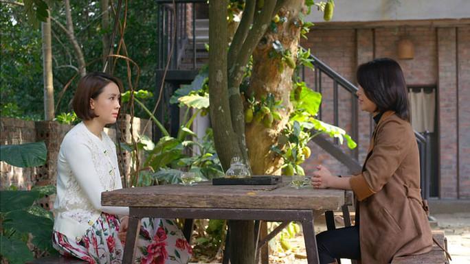 Phim truyền hình Việt: Dài, dai và dở - Ảnh 1.
